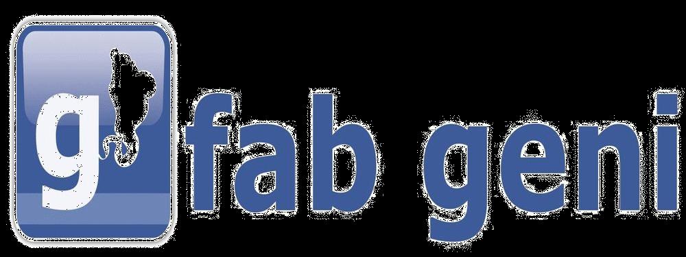 Fab Geni Digital Media Solutions