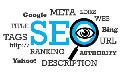 Should See SEO Guide for All WordPress Bloggers